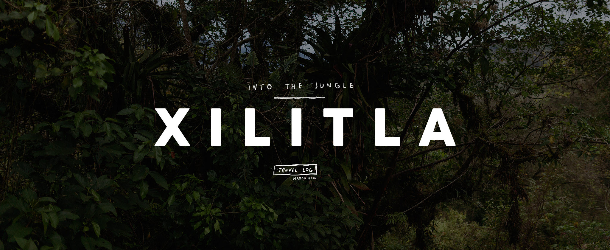 Into the Jungle: Xilitla